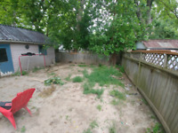 Looking for sod and install