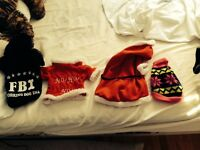 bundle of very small dog clothes