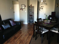 1100 sqft renovated 2 bed/1 bath, in-suite laundry in Oliver