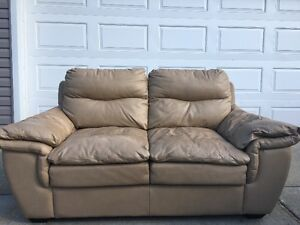 Genuine Leather Couch Set