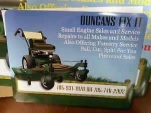 ANNUAL SMALL ENGINE TUNE UP SPECIAL Peterborough Peterborough Area image 1
