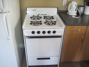 Clean 24 inch gas stove