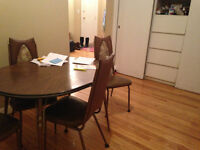 ONE BEDROOM 2 MONTH SUMMER SUBLET