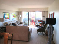 Two Bedroom Apartment in James Bay