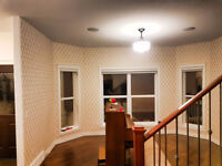 Wallpaper and Paint- Professional Service