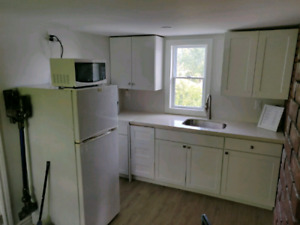 Beautiful 1bed Apt. Utilities Included