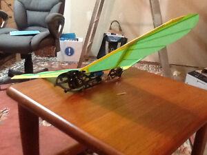 SK Ornithopter Park Hawk