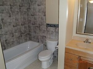Very Spacious,Newly Renovated 3 Bedroom Home-Prime Location!