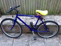 """19"""" mountain bike British eagle £55"""