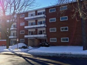 LARGE 1 BDRM (Johnson at Clergy, Walk to Queen's)
