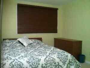 Cozy room to rent, close to all amenities.