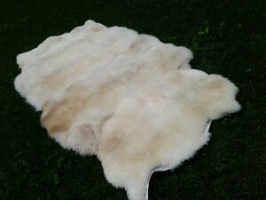 Lamb Skins from biodynamically raised lambs  100% neutral Kitchener / Waterloo Kitchener Area image 3