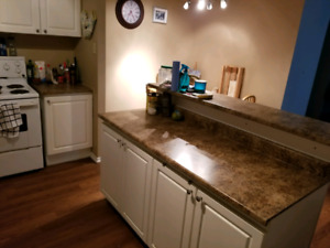 Looking for a roomate to share a townhouse!