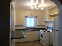 Large 1Bdr Apart.Available for 1st October in Downtown Trenton