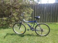 Mens Mountain Bike 21 speed (mint condition)