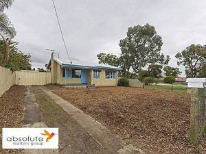 Huge Backyard and Pet Friendly Home Redcliffe Belmont Area Preview