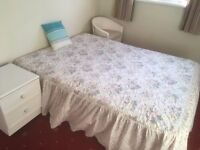 Single room for a rent in Dungannon near town centre