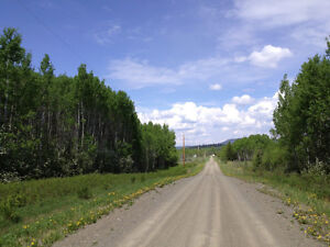 5 ACRE PROPERTY - SELLER WILL FINANCE $35,900