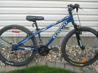 Dyno Fierce 21 speed mountain bike