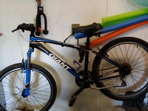Giant cycle bike