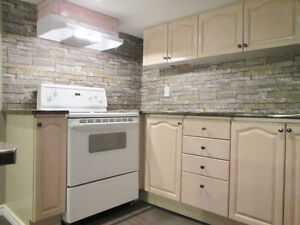 Newly Renovated Clean & Spacious Basement Studio Suite