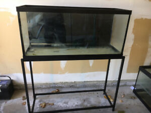 30 gallon aquarium with stand , excellent condition for sale
