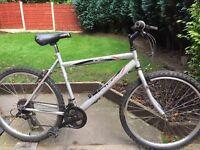 adults elswick mountain bike