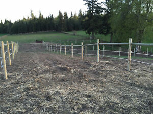 Horse Board available in Enderby BC