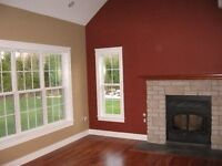 Professional Painters, Painting Services, Plaster & Home Repair