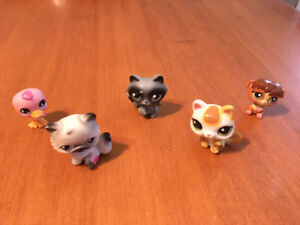 Littlest pet shop lot N cats raccoon bird chipmunk