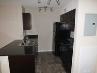 2BD 2BA + Den Condo for Rent- MOVE IN FOR FREE UNTIL JUNE 1,2015