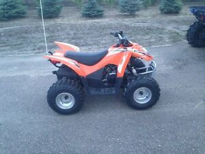 Kids Quad Artic Cat DVX90