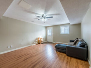 Two Bedroom Daylight Suite For Rent