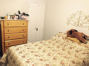 Beautiful Room seeking Mature Student or Working Professional