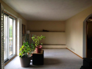 Room for rent (upper Paradise and mohawk) college