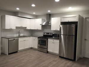 Modern & Spacious 1bdrm basement suite