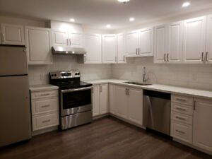 SPOTLESS  3-BDRM  LEGAL  BSMNT  APARTMENT  FOR  RENT -  OSHAWA