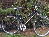 Mountain/hybrid bike