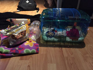 2 male PET mice for sale w/ cage
