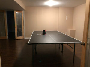 Table Tennis/Ping Pong table