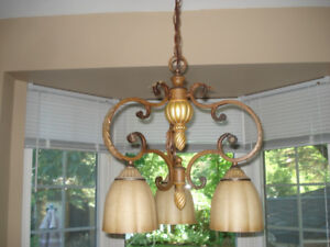 Ceiling Light Fixture Price Reduced