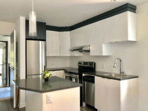 4 ½ split level Condo for rent near down town Montreal & MUHC ho
