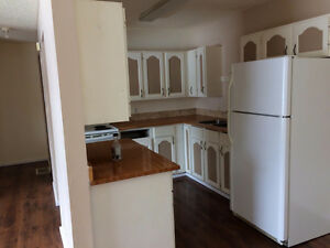 Spacious 2 bedroom Suite in Ashmont Available Immediately