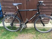 """Mens 22"""" BSA bicycle. Inc mudguards, rack, lights & bell. Free delivery. D lock available."""