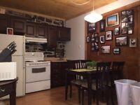 Très beau loft, renové, chauffé, internet inclus