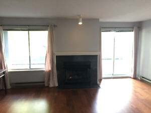 Large 1200 sq ft condo with spectacular 500 sq ft deck