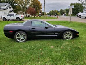 2000 C5 Corvette Hard Top