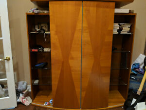 Great entertainment unit / bookcase shelves