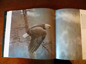 Robert Bateman, An Artist in Nature Edmonton Edmonton Area image 5