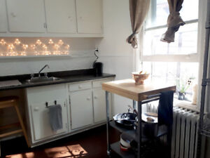 BRIGHT SPACIOUS STUDIO IN CENTRALLY LOCATED DOWNTOWN MONTREAL